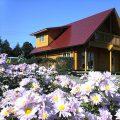 赤い屋根のログハウスの外観|小美玉市の注文住宅,ログハウスのような木の家を低価格で建てるならエイ・ワン