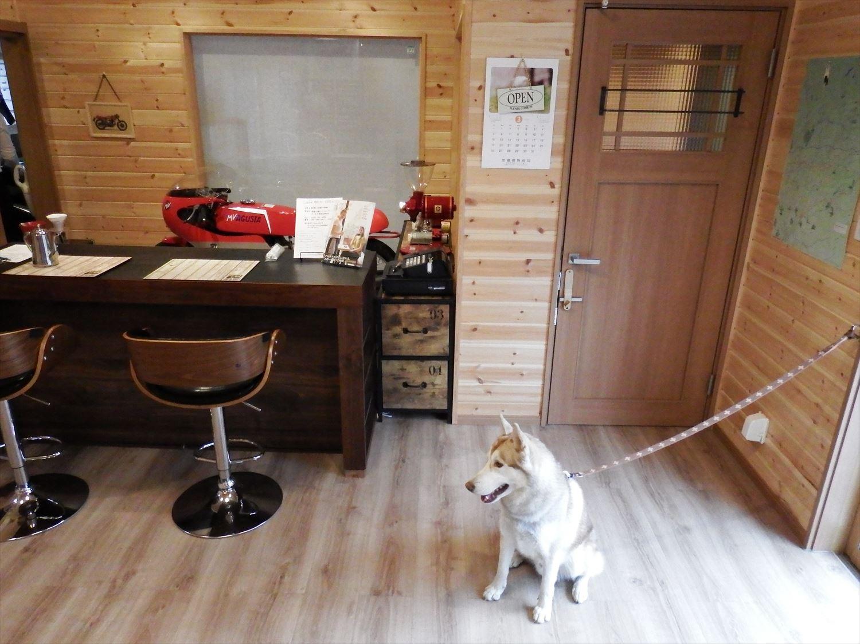 ドッグカフェ店舗住宅と犬|那須塩原の注文住宅,ログハウスのような木の家を低価格で建てるならエイ・ワン